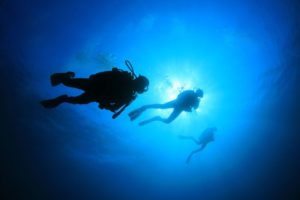 SPECIALTY COURSES | Amazing Dive