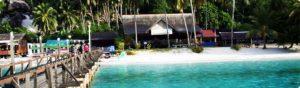 dayang island | Amazing Dive
